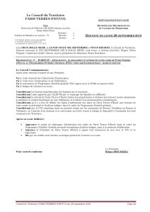 doc-de-syntha%c2%a8se-ct-26-septembre-2016_page_42